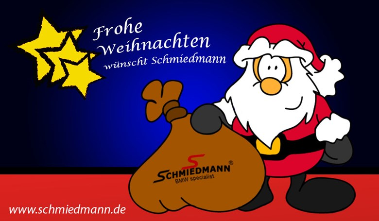 Schmiedmann Christmas Newsletter