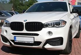 BMW X6 BMW Performance Kidneys 01