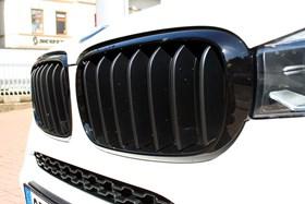 BMW X6 BMW Performance Kidneys 02