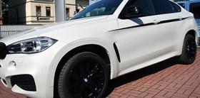 BMW X6 BMW Performance Kidneys 03