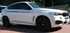 BMW X6 BMW Performance Kidneys 04