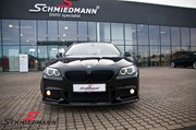 BMW F11 525 M Tech Performance Grill 25