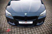 BMW F11 525 M Tech Performance Grill 27