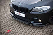 BMW F11 525 M Tech Performance Grill 28