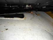 BMW E61 Panorama Roof Water Trunk 08