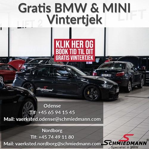 Gratis BMW Vintertjek