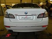 BMW F10LCI White Line Rear Lights 08